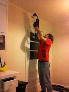 How to catch a moth, the bachelor way... I think this is a pretty effective strategy.