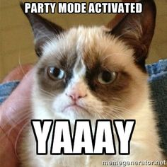 Grumpy Cat  - Party mode activated yaaay