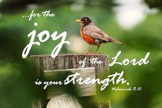 Psalm 3:3 ~ But you, LORD, are a shield around me, my glory, the One who lifts my head high.