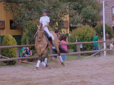 Emma Castan en el Concurso de Doma Clásica CDT0* + CDT1* que celebramos el 29 de Junio en #HípicaCanVila. ¡Así de bien lo pasamos! #MomentosCanVila #Hípica #Montseny www.hipicacanvila...