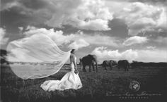 Welcome - Cara-lee Gevers Creative Wedding Photography, Africa, Wedding Inspiration, Inspired, Artwork, Animals, Photo Studio, Work Of Art, Animales