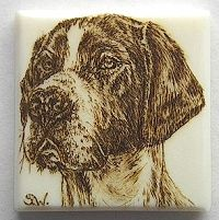 "'Pointer' - this dog was burned on a small square of old piano key ivory. The working area was only tiny, (around 3/4"" square), so I used the toe of a skew to burn the entire piece."