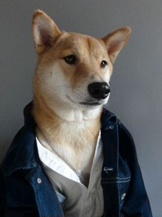 Menswear Dog • Film Fashion: Stealing Ryan Gosling's Look In...