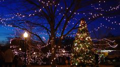The Best Small Towns for Christmas in the South: Andalusia, Alabama Christmas Events, Christmas Town, Christmas Travel, Victorian Christmas, Christmas Lights, Christmas Ideas, Christmas Getaways, Christmas Destinations, Southern Christmas
