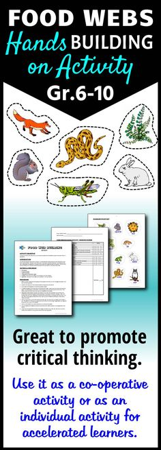 Get students to build their own food webs with this interactive activity.  This forces them to critically think about the interconnections in food webs.  It can be a stand alone activity or used in an interactive notebook.