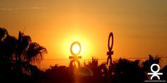 The #ibizasunset as seen from #oceanbeachibiza #ibiza #sunset