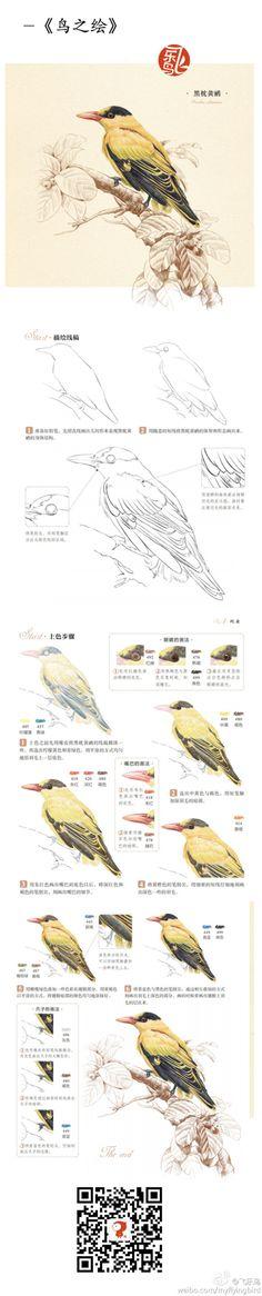 飞乐鸟的照片 - 微相册