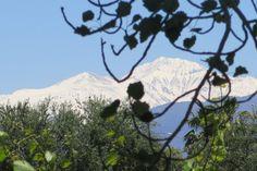 Blog da Gavioli: Mendoza: vá preparado