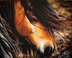 """""""The Noble One"""" is wild gorgeous pastel vanner mustang horse drawing. The equine western fine art print is 11in x 14in (27.94cm x 35.56cm). MEMBER - AutumnLaneArtistry"""