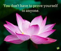 You don't have to prove yourself to anyone.