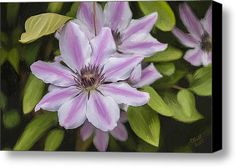 Passion Stretched Canvas Print / Canvas Art By Tanya Hall