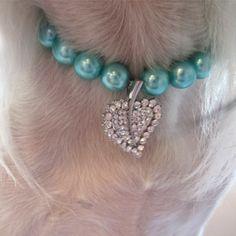 Koiran Helmet Diva's Leaf Koiran koru. Sinivihreää ja valkoista helmeä. Strassiriipus ja sininen rusetti. säädettävä pituus 26-30cm. - See more at: http://somemore.fi/tuotteet.html?id=10/81#sthash.2tyjHhMR.dpuf