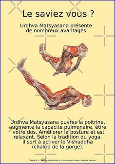 Boutique de rodolphe Augusto   Redbubble Ashtanga Vinyasa Yoga, Les Chakras, Relaxing Yoga, Yoga Positions, Trx, Life Motivation, Asana, Boutique, Yoga Poses