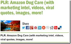 PLR: Amazon Dog Care (with marketing intel, videos, viral quotes, images, more!