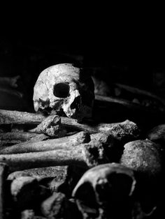 skull bones dark black & white