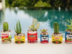 These would be cute for a Cinco de Mayo party or something! To tell you the truth, I still do this, I thought everyone did :-)