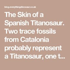 The Skin of a Spanish Titanosaur.  Two trace fossils from Catalonia probably represent a Titanosaur, one that lived very close to the K-Pg extinction event.