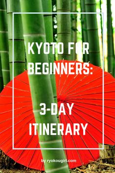 First trip to Kyoto? You'll need a few tips from this 3 day Kyoto itinerary for beginners. Don't miss out in Japan's culture capital! Kyoto Travel Guide, Japan Travel Guide, Asia Travel, Kyoto Itinerary, Kyoto Japan, Okinawa Japan, Tokyo Japan, Visit Japan, Photos Du