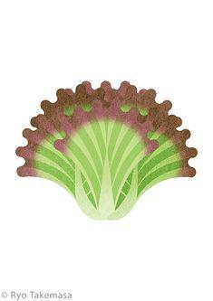 Redleaf lettuce Art Print by Ryo Takemasa - X-Small Plant Illustration, Graphic Design Illustration, Botanical Illustration, Digital Illustration, Graphic Art, Ryo Takemasa, Kraft Heinz, Food Illustrations, Japanese Art
