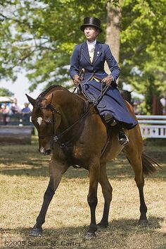 'Georgie averred she much preferred her Firefly, petting her high-bred mare as she coquetted, well aware she was being praised.' This pic - Lady riding side-saddle at Upperville Horse Show. location:Virginia photographer: Susan M.