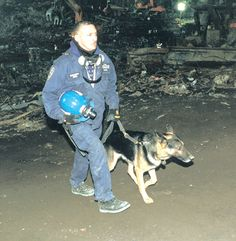 A Tribute to the Heroic Dogs of 9-11 | (DOG)SPIRED