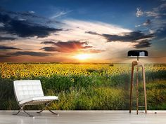 Foto #Tapete Ein Feld von Sonnenblumen Felder, Outdoor Furniture, Outdoor Decor, Park, Home Decor, Photos, Self Adhesive Wallpaper, Sunflowers, Passion