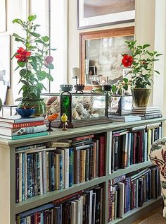 """The author describes her less formal living space, which incorporates her office, as """"sort of vagabond/World of Interiors. It is layered to the teeth. I've got all the crazy things I've collected on my travels from African baskets and birds' nests to suzanis I bought in Kabul and lots of pieces of French faience pottery. There are seashells and tortoiseshells, avian taxidermy, and lots of maps, books, and photographs taken by friends—mostly of the natural world."""""""