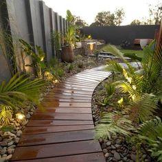 Backyard Tropical Rain Forest - Home and Garden Design Idea\'s ...
