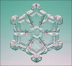snowflake microscopic - Bing Images