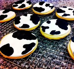 We MOOved cow cookies to celebrate moving to a new home!