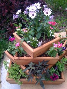 My Favorite Wood Planter