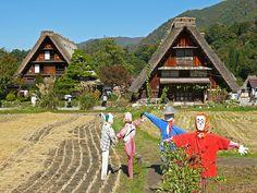 Shirakawa Village | Japan