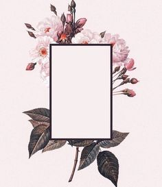 Moldura floral Eye Makeup becky g eye makeup Cute Wallpapers, Wallpaper Backgrounds, Iphone Wallpaper, The 1975 Wallpaper, Flower Backgrounds, The 1975 Tattoos, Overlays, Art Plastic, Polaroid Frame