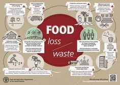 Hunger is still one of the most urgent development challenges, yet the world is producing more than enough food. Recovering just half of what is lost or wasted could feed the world alone. Food Waste Management, Types Of Innovation, World Hunger, Food System, Eat Seasonal, Sustainable Food, Sustainable Living, In Season Produce, Plant Based Eating