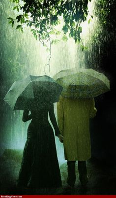 rain . . .