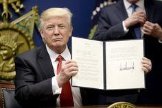 Wahlversprechen bereits umgesetzt - Trump stoppt Einreise von Muslimen