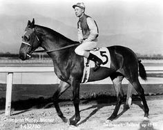 Seabiscuit  1933 - 1947  By: Hard Tack  Out of: Swing On  The Biscuit was everybody's favorite underdog.  His racing career began on Claiborne farms, where many champions come from.  But the Biscuit performed terribly, and was practically given away to Charles Howard on the West coast.  With a new owner and trainer, things turned around for Seabiscuit and he became the winningest horse of his time, even beating War Admiral in a match race in 1938.