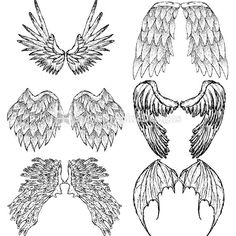 Hand Drawn Wings Vector Images