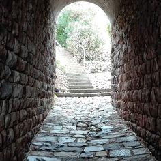 Tunnel of love. #unangeloinviaggio  Edit with @vscoM5  #italy #calabria #beautiful #bestoftheday #amazing #awesome #photo #photoofday #igers #igersoftheday #igersitalia #vsco #vscocam #vscogood #vscoitaly #tunnel #followme #seguitemi #sud #verso_sud #love #instaphoto #instagram #istamoment #istaphoto