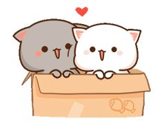 LINE Official Stickers - Mochi Mochi Peach Cat Sound Stickers Example with GIF Animation Cute Cartoon Images, Cute Love Cartoons, Cute Cartoon Wallpapers, Cute Anime Cat, Cute Cat Gif, Cute Love Gif, Cute Love Pictures, Cute Kawaii Animals, Kawaii Cat