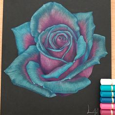 Flower Drawings Tips Turquoise Rose finished Flower Art Drawing, Black Paper Drawing, Pencil Drawings Of Flowers, Pencil Drawing Tutorials, Plant Drawing, Pencil Art Drawings, Easy Drawings, Drawing Art, Rose Petals Drawing