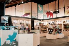 Wellington Zoo. Retail space and counters. Birch Ply. Acrylic and glass. Graphic design done in house.