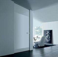 Hidden Doors modern interior doors