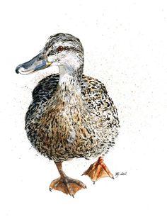 Female Mallard Duck- Jina Gelder