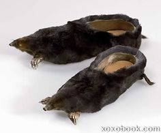 Image detail for -Weirdest Shoes Collection : Strangest,Coolest Things!