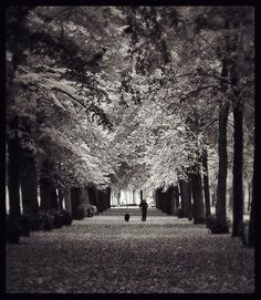 Balade au parc de la citadelle de Lille