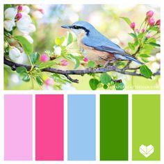Color Palette 001 - The Seasons — Paper Heart Design Bright Color Schemes, Color Schemes Colour Palettes, Spring Color Palette, Green Colour Palette, Spring Colors, Design Seeds, Saturated Color, Color Theory, Color Inspiration