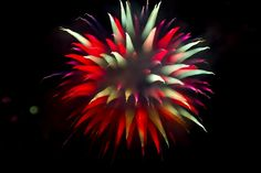Fireworks | Clown's Hat | Flickr - Photo Sharing!