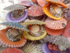 ... Tips & Food News | Grilled Sea Scallops, Scallops and Grilled Scallops