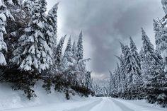****  Fantastic winter landscape/Fantàstic paisatge invernal